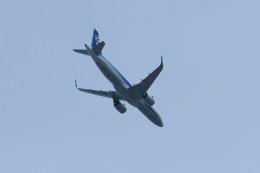 hikanagiさんが、大館能代空港で撮影した全日空 A320-271Nの航空フォト(飛行機 写真・画像)