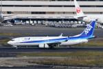 kuro2059さんが、羽田空港で撮影した全日空 737-8ALの航空フォト(飛行機 写真・画像)