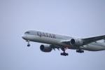 さもんほうさくさんが、成田国際空港で撮影したカタール航空 A350-1041の航空フォト(飛行機 写真・画像)