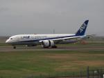ここはどこ?さんが、新千歳空港で撮影した全日空 787-8 Dreamlinerの航空フォト(飛行機 写真・画像)
