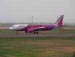 ここはどこ?さんが、新千歳空港で撮影したピーチ A320-214の航空フォト(飛行機 写真・画像)