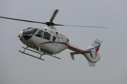 TUILANYAKSUさんが、東京ヘリポートで撮影した静岡エアコミュータ EC135T2の航空フォト(飛行機 写真・画像)