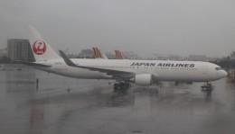 Rsaさんが、高雄国際空港で撮影した日本航空 767-346/ERの航空フォト(飛行機 写真・画像)