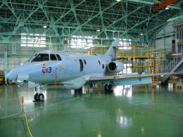 航空フォト:02-3013 航空自衛隊 U-125A