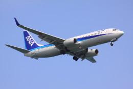 けいとパパさんが、羽田空港で撮影した全日空 737-881の航空フォト(飛行機 写真・画像)