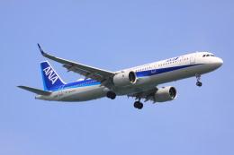 けいとパパさんが、羽田空港で撮影した全日空 A321-272Nの航空フォト(飛行機 写真・画像)