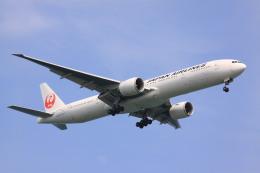けいとパパさんが、羽田空港で撮影した日本航空 777-346/ERの航空フォト(飛行機 写真・画像)