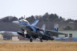 maverickさんが、茨城空港で撮影した航空自衛隊 F-15DJ Eagleの航空フォト(飛行機 写真・画像)