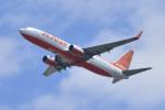 パンダさんが、成田国際空港で撮影したチェジュ航空 737-8ASの航空フォト(飛行機 写真・画像)