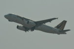 LEGACY-747さんが、香港国際空港で撮影したタイガーエア A320-232の航空フォト(飛行機 写真・画像)