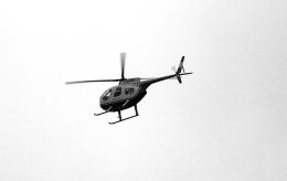 masahiさんが、静岡県静岡市安倍川河川敷で撮影した中日新聞社 369HSの航空フォト(飛行機 写真・画像)
