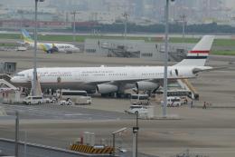 TUILANYAKSUさんが、羽田空港で撮影したエジプト政府 A340-211の航空フォト(飛行機 写真・画像)