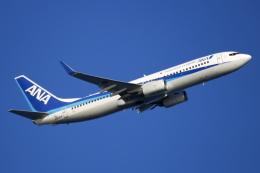 NANASE UNITED®さんが、羽田空港で撮影した全日空 737-881の航空フォト(飛行機 写真・画像)