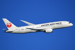 航空フォト:JA823J 日本航空 787-8 Dreamliner