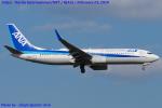 Chofu Spotter Ariaさんが、成田国際空港で撮影した全日空 737-881の航空フォト(飛行機 写真・画像)