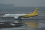 LEGACY-747さんが、新千歳空港で撮影したバニラエア A320-214の航空フォト(飛行機 写真・画像)