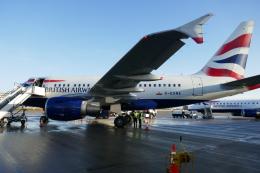 TUILANYAKSUさんが、ロンドン・シティ空港で撮影したブリティッシュ・エアウェイズ A318-112の航空フォト(飛行機 写真・画像)