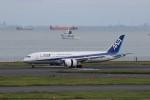 KAZFLYERさんが、羽田空港で撮影した全日空 787-8 Dreamlinerの航空フォト(飛行機 写真・画像)