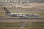 フレッシュマリオさんが、羽田空港で撮影したスカイマーク 737-86Nの航空フォト(飛行機 写真・画像)