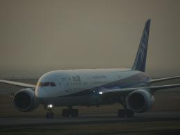 +Hornetさんが、長崎空港で撮影した全日空 787-9の航空フォト(飛行機 写真・画像)