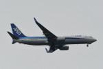 kuro2059さんが、中部国際空港で撮影した全日空 737-8ALの航空フォト(飛行機 写真・画像)