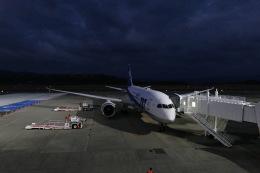 +Hornetさんが、長崎空港で撮影した全日空 787-8 Dreamlinerの航空フォト(飛行機 写真・画像)