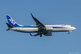 ぱん_くまさんが、羽田空港で撮影した全日空 737-881の航空フォト(飛行機 写真・画像)