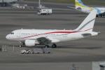 TUILANYAKSUさんが、羽田空港で撮影したグローバル・ジェット・ルクセンブルク A318-112 CJ Eliteの航空フォト(飛行機 写真・画像)