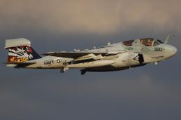 Talon.Kさんが、厚木飛行場で撮影したアメリカ海軍 EA-6B Prowler (G-128)の航空フォト(飛行機 写真・画像)