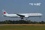 tassさんが、成田国際空港で撮影したエア・カナダ 777-333/ERの航空フォト(飛行機 写真・画像)