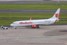 mameshibaさんが、シドニー国際空港で撮影したマリンド・エア 737-8GPの航空フォト(飛行機 写真・画像)