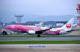 キットカットさんが、福岡空港で撮影した日本トランスオーシャン航空 737-8Q3の航空フォト(飛行機 写真・画像)