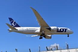 しめぎさんが、成田国際空港で撮影したLOTポーランド航空 787-8 Dreamlinerの航空フォト(飛行機 写真・画像)