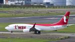 パンダさんが、成田国際空港で撮影したティーウェイ航空 737-8ALの航空フォト(飛行機 写真・画像)