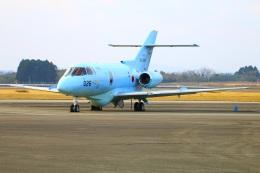 Tomo_mczさんが、新田原基地で撮影した航空自衛隊 U-125A(Hawker 800)の航空フォト(飛行機 写真・画像)