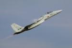 Tomo_mczさんが、新田原基地で撮影した航空自衛隊 F-15J Eagleの航空フォト(飛行機 写真・画像)