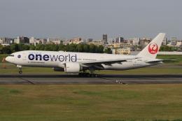 キイロイトリさんが、伊丹空港で撮影した日本航空 777-246/ERの航空フォト(飛行機 写真・画像)