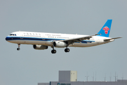 saoya_saodakeさんが、成田国際空港で撮影した上海航空 737-89Pの航空フォト(飛行機 写真・画像)