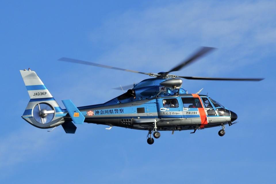 飛行機ゆうちゃんさんの神奈川県警察 Eurocopter AS365/565 Dauphin 2/Panther (JA03KP) 航空フォト