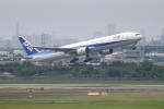 kaz787さんが、伊丹空港で撮影した全日空 777-381の航空フォト(飛行機 写真・画像)