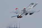 ばとさんが、岩国空港で撮影したアメリカ海兵隊 F/A-18C Hornetの航空フォト(飛行機 写真・画像)