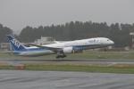 武田菱さんが、成田国際空港で撮影した全日空 787-9の航空フォト(飛行機 写真・画像)