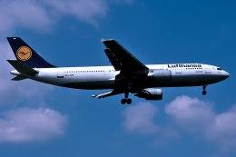 パール大山さんが、ロンドン・ヒースロー空港で撮影したルフトハンザドイツ航空 A300B4-603の航空フォト(飛行機 写真・画像)