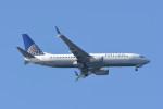 kuro2059さんが、中部国際空港で撮影したユナイテッド航空 737-824の航空フォト(飛行機 写真・画像)
