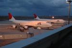 sachiさんが、新潟空港で撮影した日本航空 747-446の航空フォト(飛行機 写真・画像)