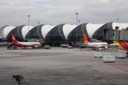 Rsaさんが、スワンナプーム国際空港で撮影した上海航空 737-89Pの航空フォト(飛行機 写真・画像)