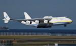 青い翼に鎧武者マークの!さんが、中部国際空港で撮影したアントノフ・エアラインズ An-225 Mriyaの航空フォト(飛行機 写真・画像)