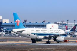 Y-Kenzoさんが、成田国際空港で撮影した中国南方航空 A319-132の航空フォト(飛行機 写真・画像)