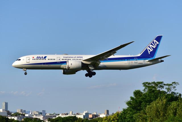 伊丹空港 - Osaka International Airport [ITM/RJOO]で撮影された伊丹空港 - Osaka International Airport [ITM/RJOO]の航空機写真(フォト・画像)