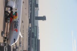 kumapapaさんが、成田国際空港で撮影したジェットスター 787-8 Dreamlinerの航空フォト(飛行機 写真・画像)